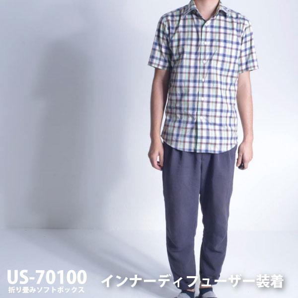 70100_ID