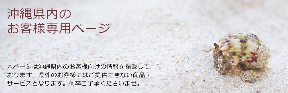 OMNIVAS(オムニバス)沖縄県内のお客様専用ページ