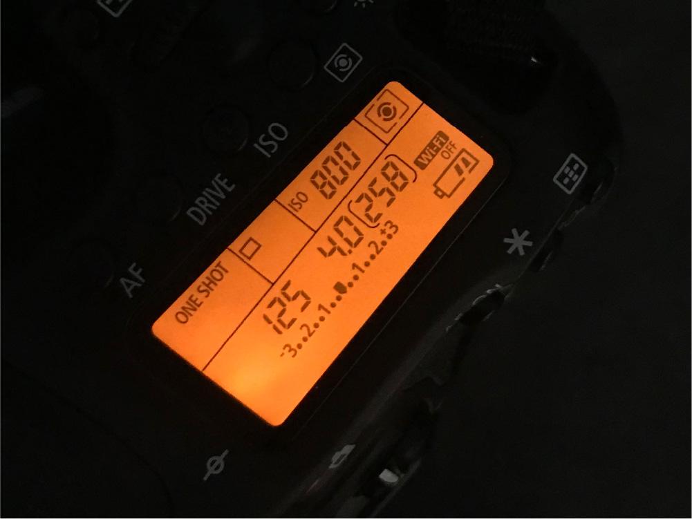 カメラ設定はSS:1/125、絞りは4.0、ISOは各画像にてご確認ください